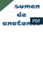Anatomía Humana.docx