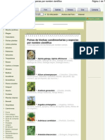 Hierbas Aromaticas, Semilleros y Cultivos de Infojardin