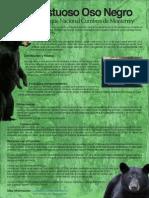 poster_oso.pdf