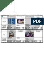 Sliva - Programa za zashtita.pdf