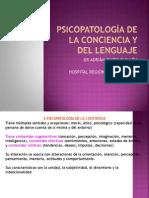 8. Psicopato Conciencia-Lenguaje