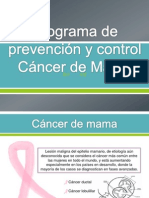 Programa de Prevencion Cancer de Mama..1