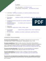 Esquema_Tipos de Lectura y Errores
