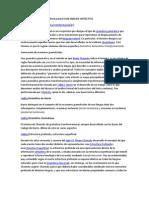Gramática generativa transformacional CON ANÁLISIS SINTÁCTICO