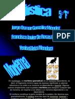 linguistica morfema grafema