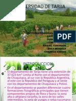 Biodiversidad de Tarija1