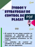 Control de Plagas Final