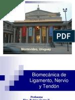 7biomecanicadeligamentosnerviosyt-090824151325-phpapp01