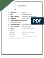 Plan Operativo Orgalili[1]