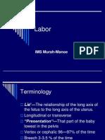 8.Labor