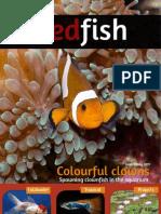 Redfish Magazine 2011 July Au