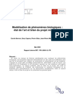 RapportInterne_microMega.pdf