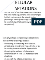 Cellular Adaptations