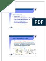 4rnyrp_mlp.pdf