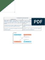 Comparacion de las Reacciones endotérmicas y exotermicas