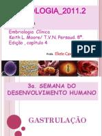 gastrulação_2011_1