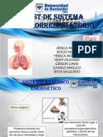 Test de sistema cardiorrespiratorio (2da expo de Preparación Física I)
