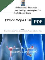 Seminário FISIOLOGIA - Sistema Reprodutor F-M (1)