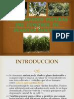 Posibilidades Futuras Del Control de Plantas Nocivas