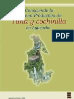 Conociendo La Cadena de La Tuna y Cochinilla en Ayacucho