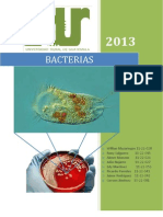 Documento Presentacion Bacterias