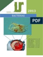Documento Presentacion Bacterias