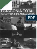 Gomez Otero y Bellelli 2006 Patagonia Total