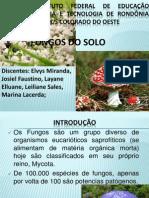 Microbiologia do solo-parte fungos.pptx