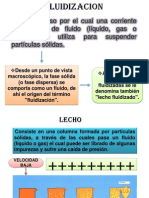 5.3 Fluidizacion.pptx
