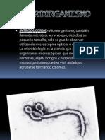 Microorganism o