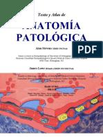 Anatom a Patol Gica