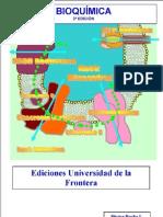 Bioquimica Rocha. 2da Edic.
