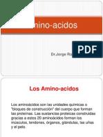 Amino Acidos