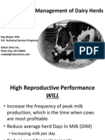 Reproductive Management of Dairy Herds
