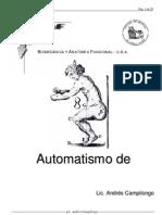 Automatismo de Fondo