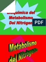 Bioquimica Del Metaboliosmo Del Nitrogeno