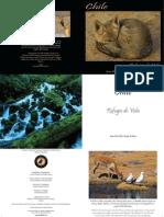 De la Harpe, Jean Paul - Chile refugio de vida.pdf