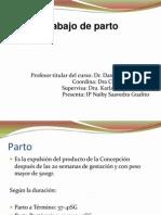 20110220 Trabajo de Parto
