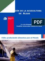 Cultivo de Algas en Chile