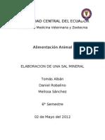 Elaboracion de Una Sal Mineral