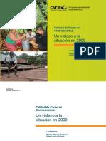 Cacao Catie Centroamerica