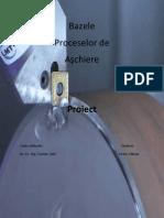 Proiect Final PDF