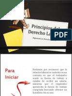 Principios Derecho Laboral