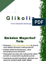 glikoliz-2009s