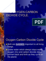 Oxygen-carbon cycle.ppt