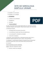 Elemente de Semiologia Aparatului Urinar
