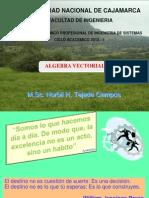 Algebra Vectorial 2013-1