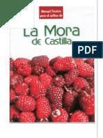 Cultivo de La Mora