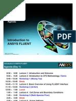 Fluent 13.0 Agenda