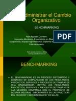 Benchmarking Administrar El Cambio Organizativo